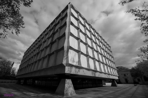 Beineke Library-1.jpg