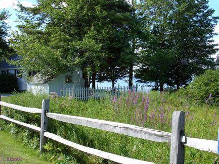 in Maine-1.jpg