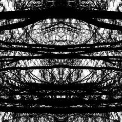 Neurosis © Ludovic Bourgeois