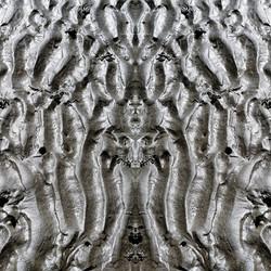 Ôkeanos © Ludovic Bourgeois