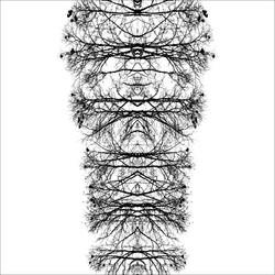 L'espace du dedans © Ludovic Bourgeois