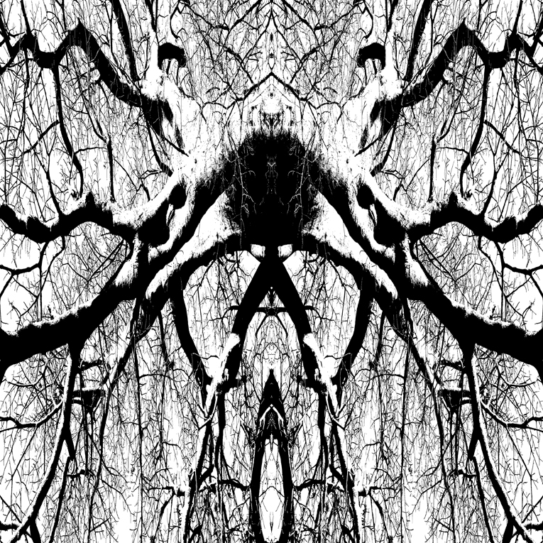 Murïd © Ludovic Bourgeois