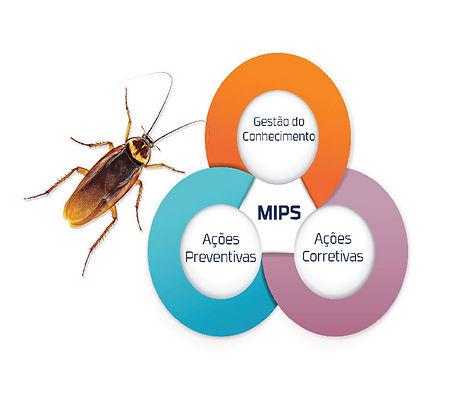 MIPS 3.jpg