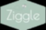ziggle.png