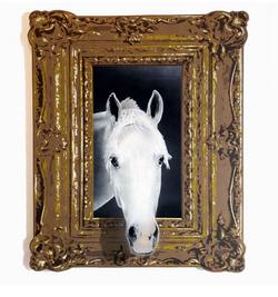 """A Horse of Course"""