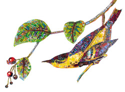 "Carbonated Swamp Warbler"""