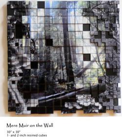Muir Muir on the Wall