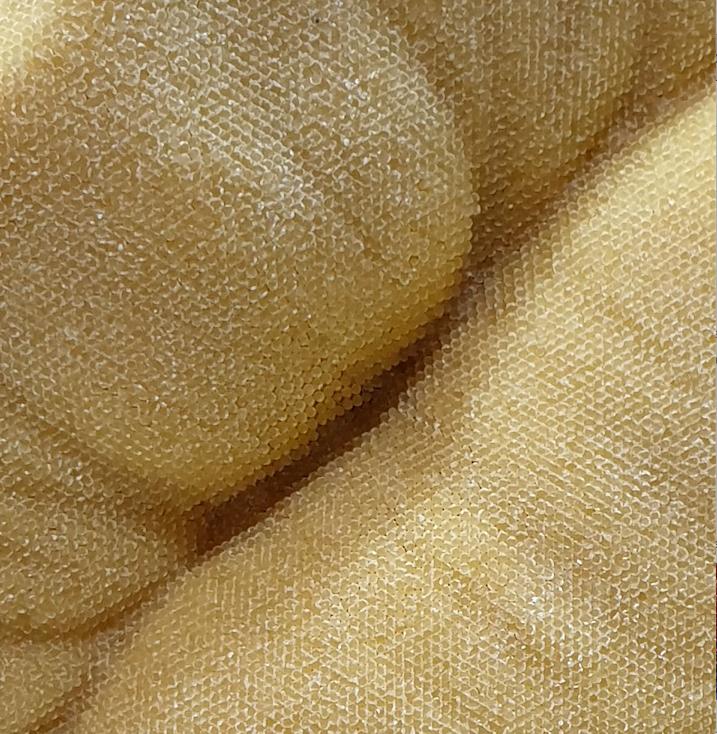 Detail noodles