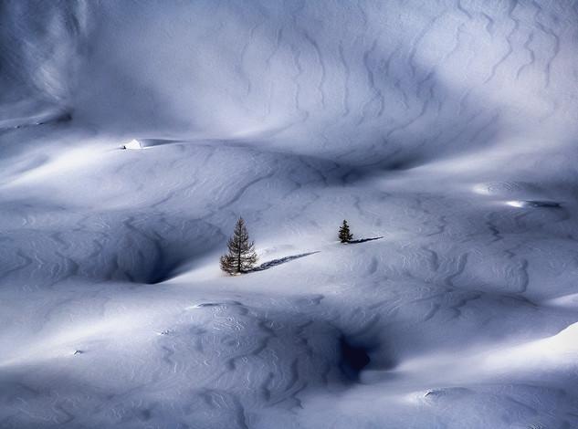 winter veins (website)..jpg