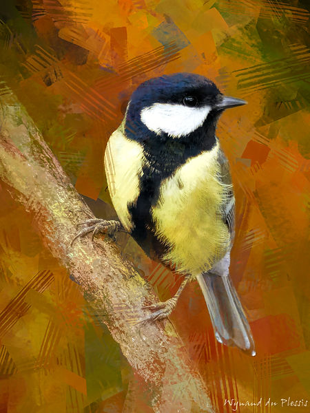Bird art painting printed on canvas - GREAT TIT