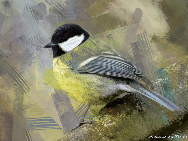 Bird Photo Art - Great tit - fine art prints on the Art Print Media of your choice