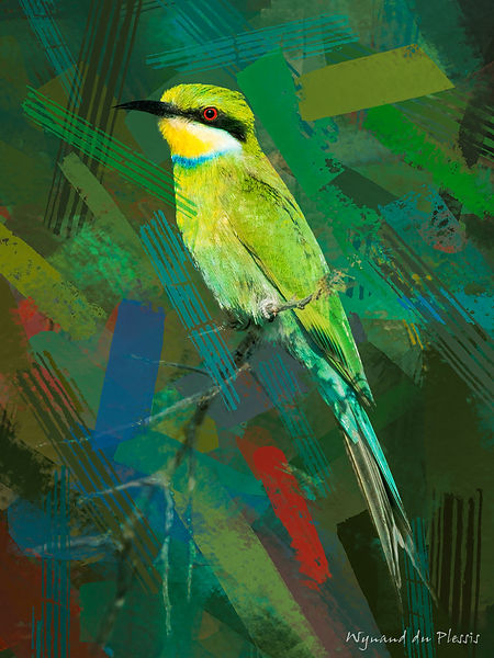 Bird Photo Art - Swallow-tailed bee-eater - fine art prints on the Art Print Media of your choice