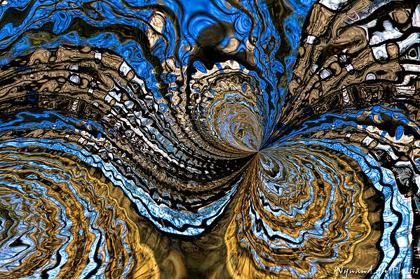 Luxury Fine Art Prints - DUALITY OF NATURE