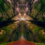 photoart-04_005