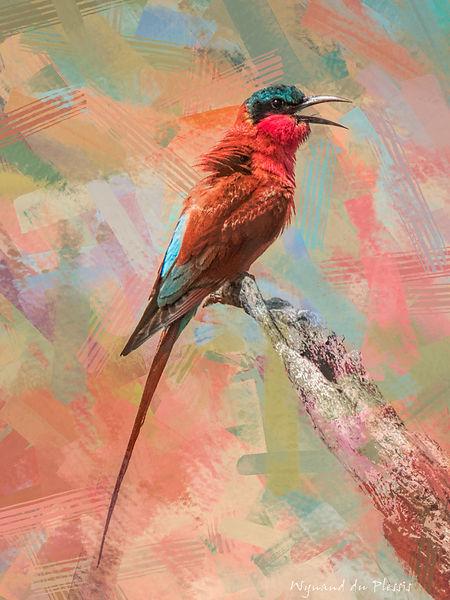 Bird photo to bird art printed on canvas - CARMINE BEE-EATER
