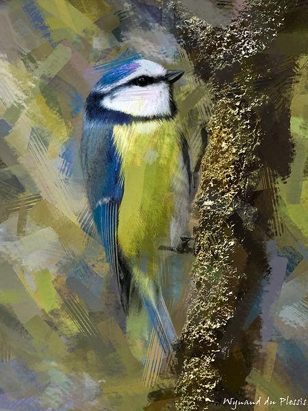 Bird Photo Art - Blue tit - fine art prints on the Art Print Media of your choice