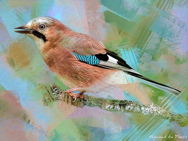 Bird painting printed on canvas - EURASIAN JAY