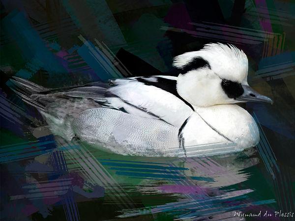 Bird photo to bird art printed on canvas - SMEW