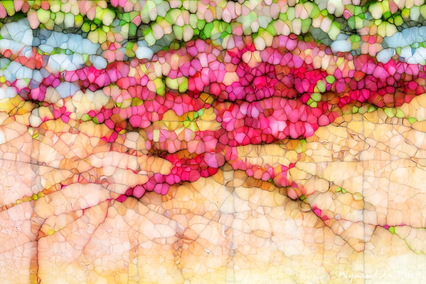 Luxury Fine Art Prints - BLOTCHES OF COLOUR