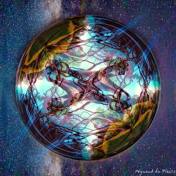 Distortions - fine art prints on the Art Print Media of your choice