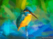 Bird painting printed on canvas - KINGFISHER