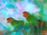 Bird painting printed on canvas - ROCY-FACED LOVEBIRD