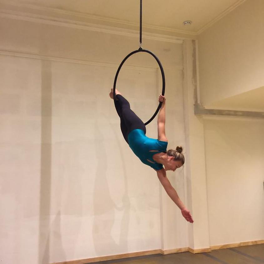 Cursus Aerial Hoop beginners