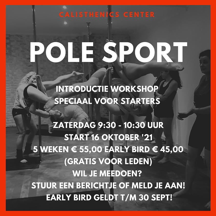 Pole sport introductie workshop