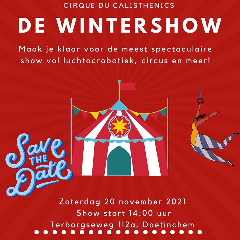 Wintershow Cirque du Calisthenics