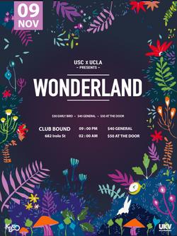 Wonderland Poster (2017)