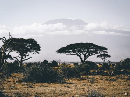 Кілька слів про регіони. Кава з Африки