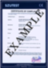 OSE-20-0212301_edited.jpg
