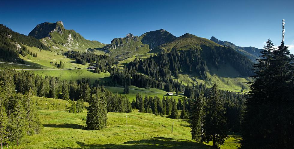 panoramaweg_gantrisch_gurnigel_zollhaus_