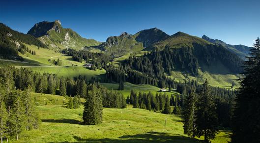 Ab in den Naturpark Gantrisch