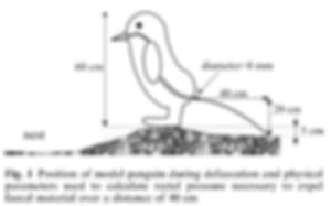 19.-The-Propulsion-Parameters-of-Penguin