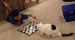 Intense Chess Game