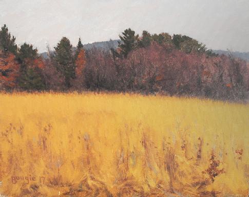 Sleeping Prairie