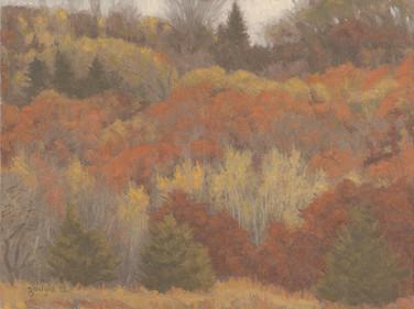 Pine Gap Ridge