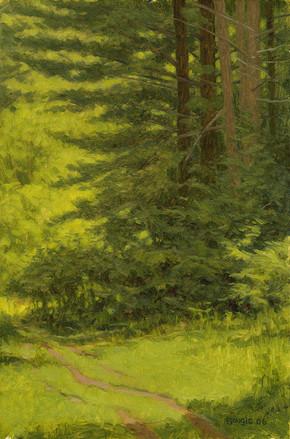 Trail Pines