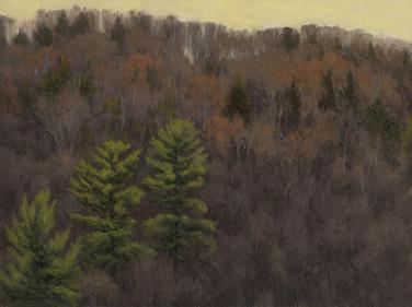 White Pine Sentinels