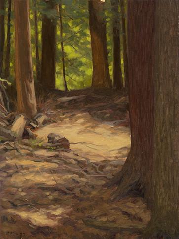 Massachusetts Woodland