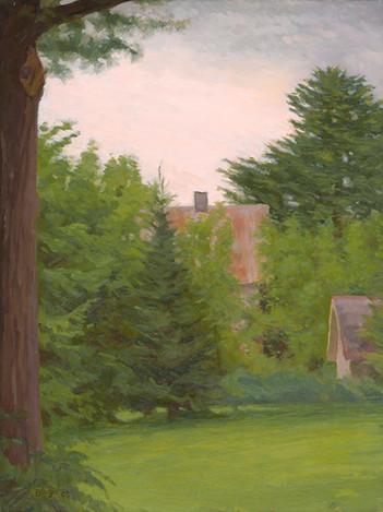 House Through the Trees