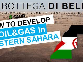 Developing Natural Resources in Western Sahara