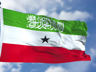 Bilateral Investment Treaties: An Underestimated Opportunity for Somaliland