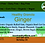 Thumbnail: Ginger Granola