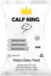 Calf King.jpg