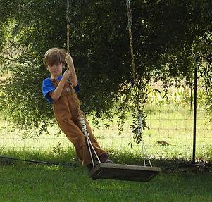 Blake on swing.JPG