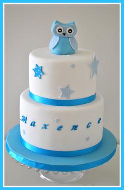 Gâteau hibou bleu