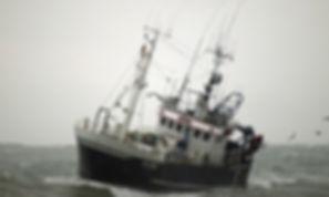 maritim.jpg