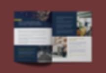 Premium Content PDF Example
